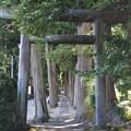 Photos: 唐松神社1