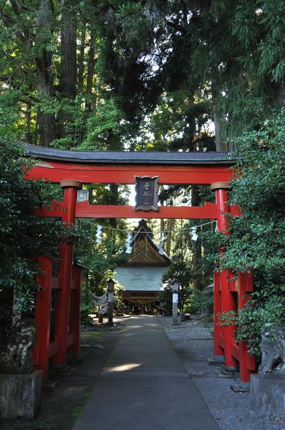 唐松神社2