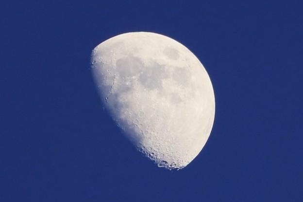 きのうのお月さま~♪