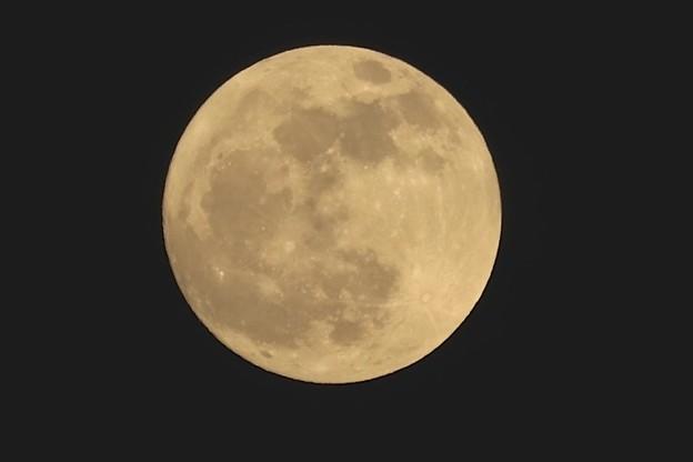 今宵のお月さま~♪
