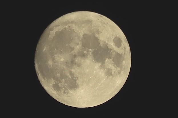 昨夜のお月さま~♪