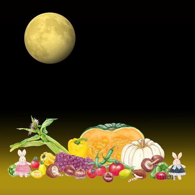 Harvest Moon~♪