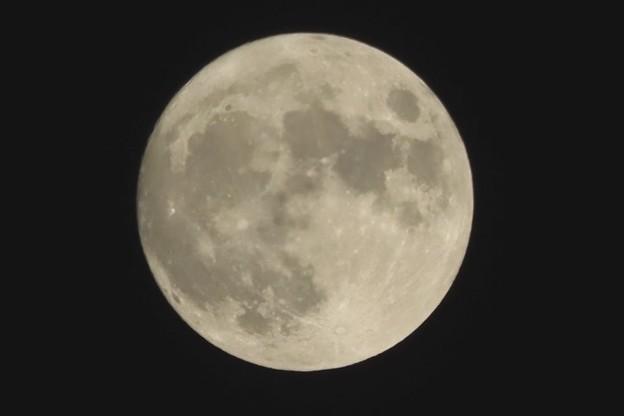 Photos: 中秋の名月~ほとんど白~♪
