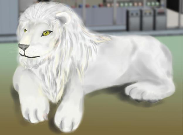 Lion_差分
