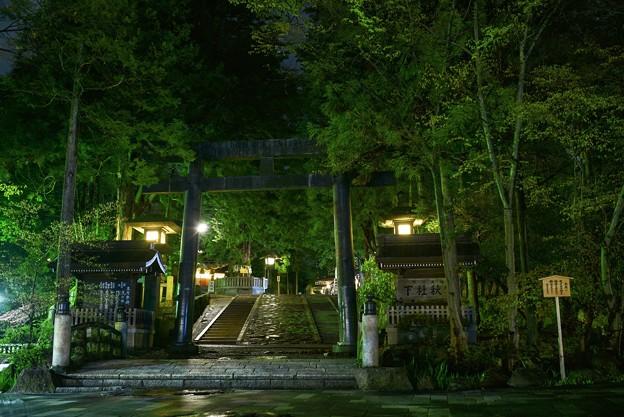Photos: 諏訪大社