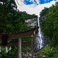 Photos: 那智の滝