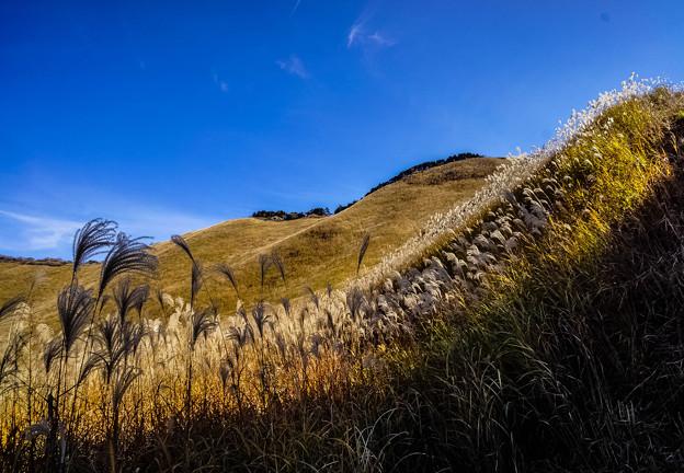 曽爾高原の秋-2