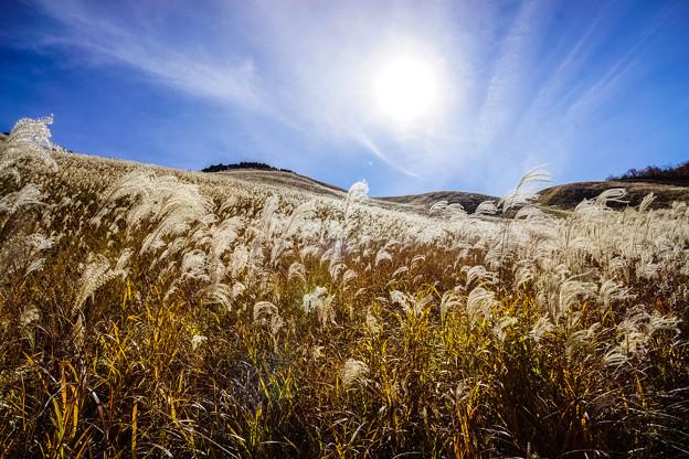 曽爾高原の秋-3