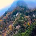 Photos: 曽爾村の秋-8