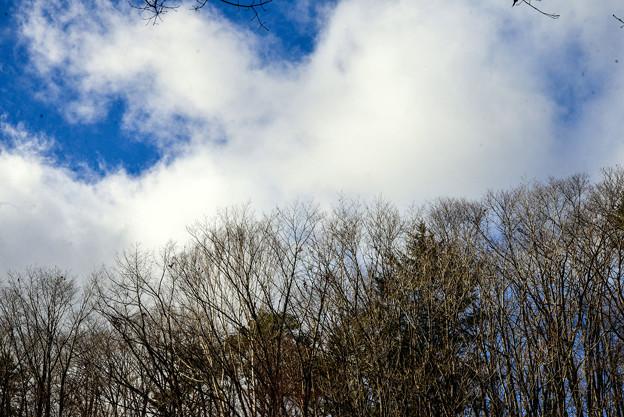 初冬の里-雪風、雲流れ
