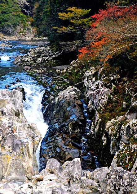 古座川の秋-3
