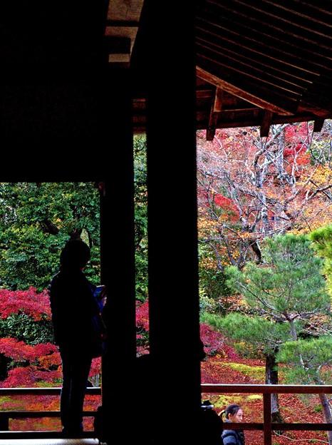 秋の京都嵐山の散歩-2