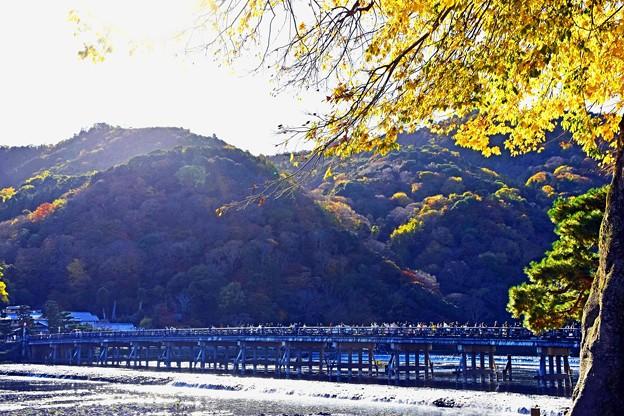 京都の秋-3