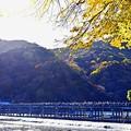 Photos: 京都の秋-3