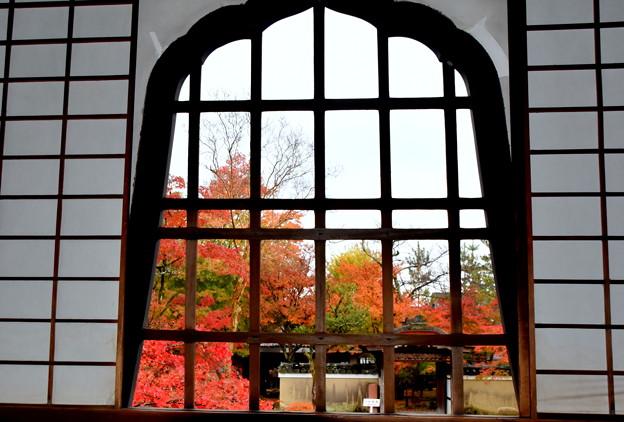 コロナ過の京都の秋-2