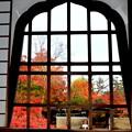 Photos: コロナ過の京都の秋-2