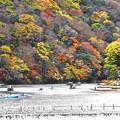 Photos: 京都嵐山-1