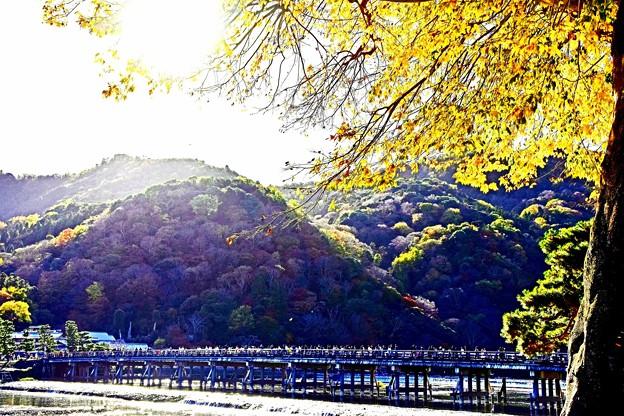 京都嵐山-2