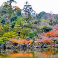 Photos: 琵琶湖彦根城