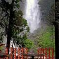 Photos: 那智の火祭り-扇祭り-1