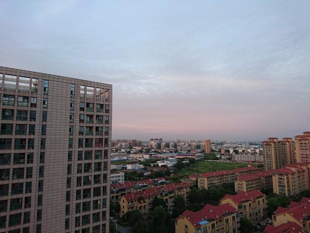 Photos: 朝~