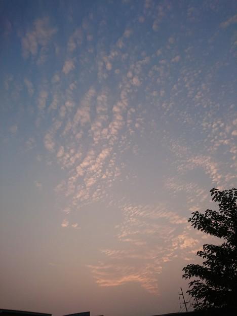 写真: 秋雲?