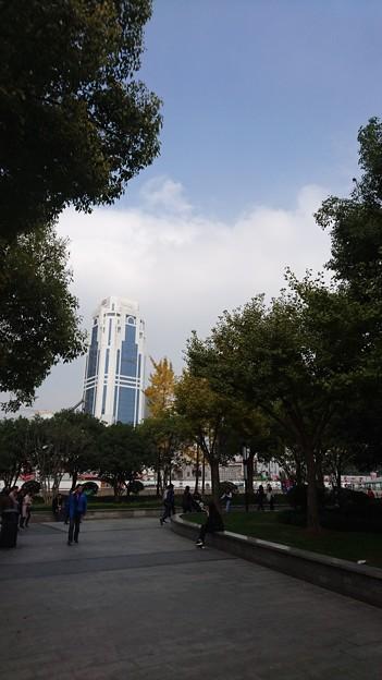 上海の黄色