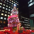青山クリスマスツリー