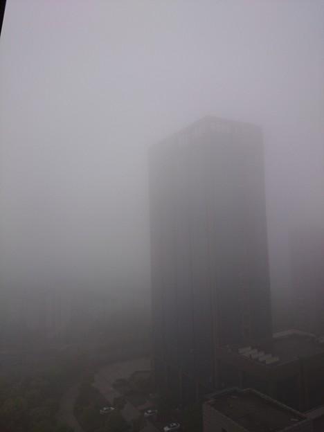 雨か濃霧か