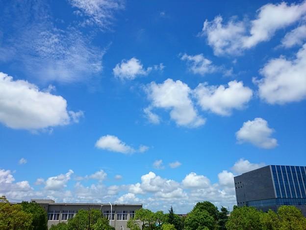 良い天気~