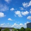 Photos: 良い天気~