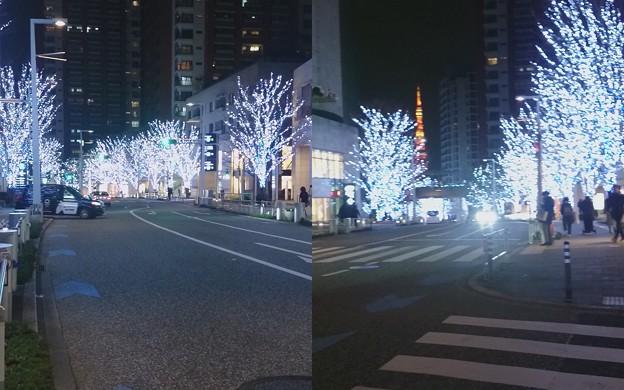 Photos: イルミネーションjpg