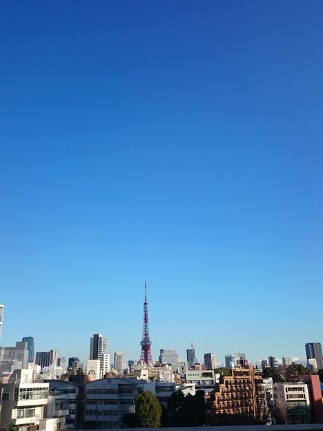 Photos: タワ~