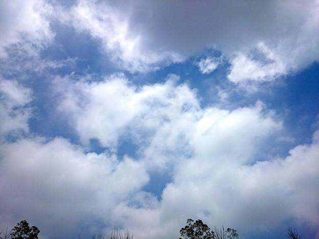 梅雨の晴れ間の雲