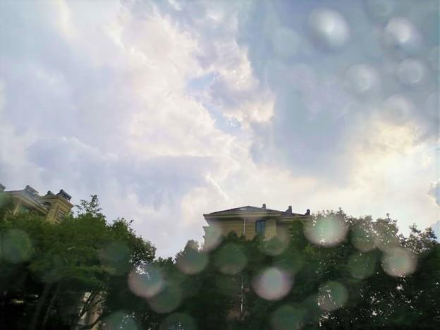 ゲリラ豪雨~晴れ
