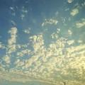 Photos: 夕方の雲