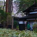 写真: 角館武家屋敷-01385