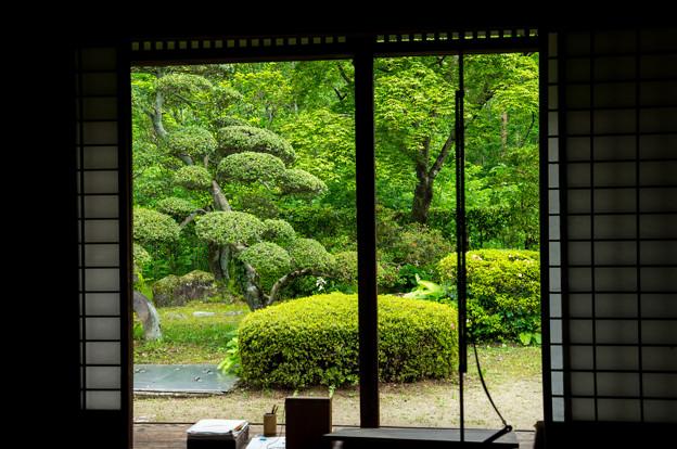 日本の夏-01559