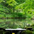 Photos: 日本の夏-01568