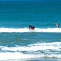 写真: 海の日サーフィン-01889
