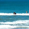 Photos: 海の日サーフィン-01888