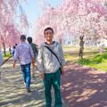 写真: 日中線記念遊歩道枝垂桜-6
