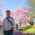 写真: 日中線記念遊歩道枝垂桜-5