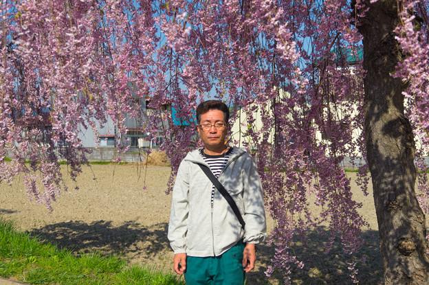 写真: 日中線記念遊歩道枝垂桜-8