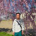 日中線記念遊歩道枝垂桜-8