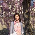 写真: 日中線記念遊歩道枝垂桜-7