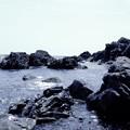 Photos: 石浜
