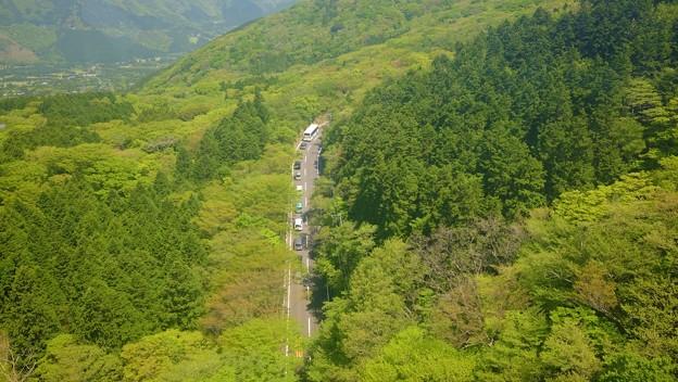 山の中の道