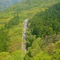 Photos: 山の中の道