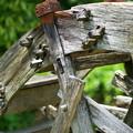 写真: 壊れた水車